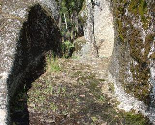 Covas e Vila Nova de Oliveirinha