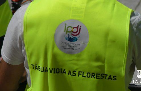 (Português) Tábua vigia as Florestas